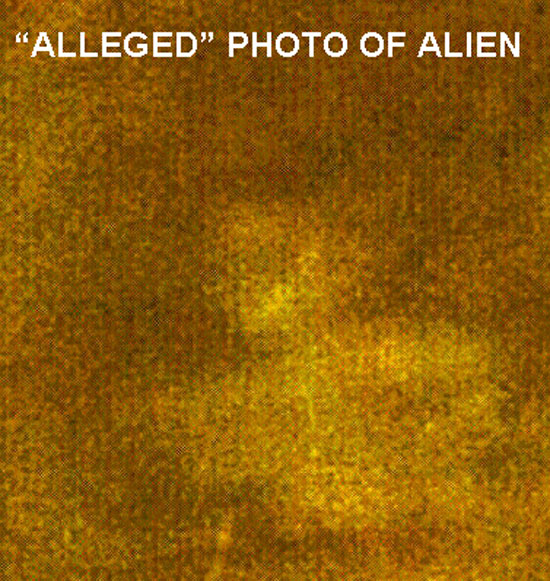"""Alleged"" Photo of Alien Being."