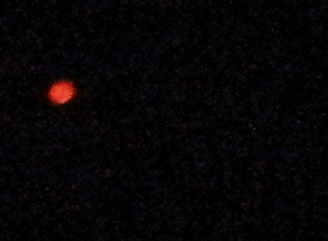 One of Orange Orbs Photographed & Seen by Witnesses.