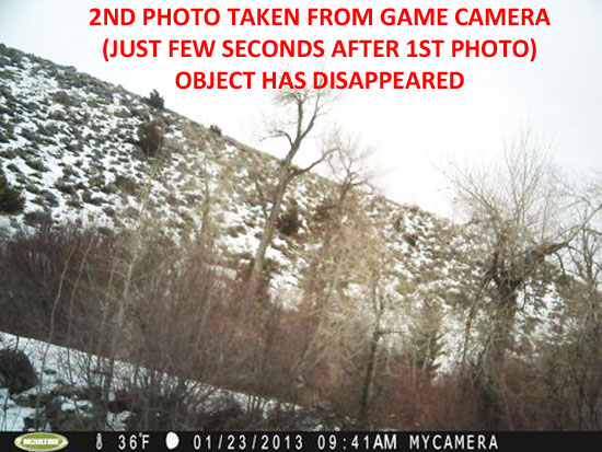 2ND PHOTO TAKEN FROM GAME CAMERA (JUST FEW SECONDS AFTER 1ST PHOTO) width=