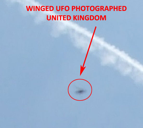 """WINGED"" UFO PHOTO ENLARGED."