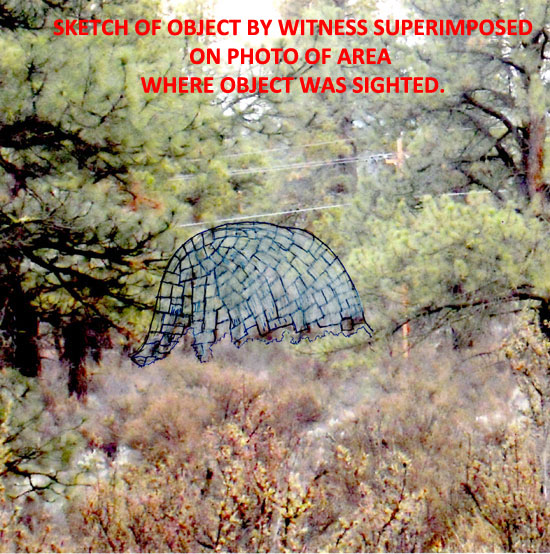 SKETCH OF OBJECT SUPERIMPOSED ON PHOTO OF AREA WHERE OBJECT WAS SIGHTED.
