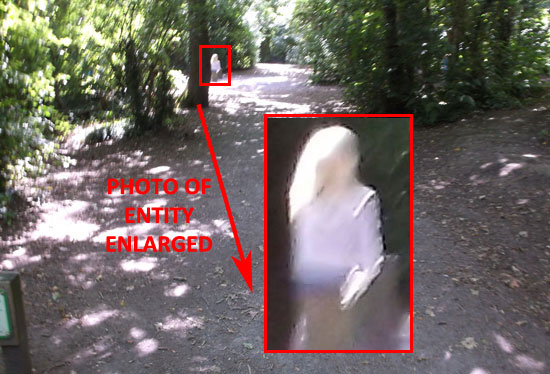 PHOTO & ENLARGEMENT OF STRANGE ENTITY SEEN BY WITNESS.