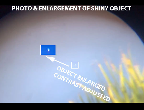 STILL IMAGE & ENLARGEMENT OF OBJECT EXTRACTED FROM VIDEO.