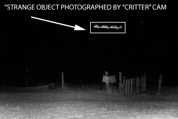 STRANGE OBJECT FOUND IN BACKGROUND OF GAME CAMERA.