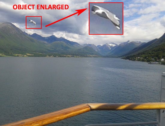 PHOTO & ENLARGEMENT OF OBJECT. (OBJECT IS OBVIOUSLY A BIRD.)