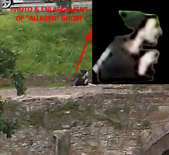 "PHOTO & ENLARGEMENT OF ""ALLEGED"" MEDIEVAL GHOST."