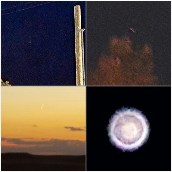 4 PHOTO COLLAGE PREPARED BY WITNESS.