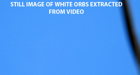 STILL IMAGE OF WHITE ORBS EXTRACTED FROM VIDEO.