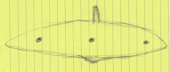 1 OF 4 SKETCHES OF OBJECT. (EACH OF 4 WITNESSES DID SKETCH.)