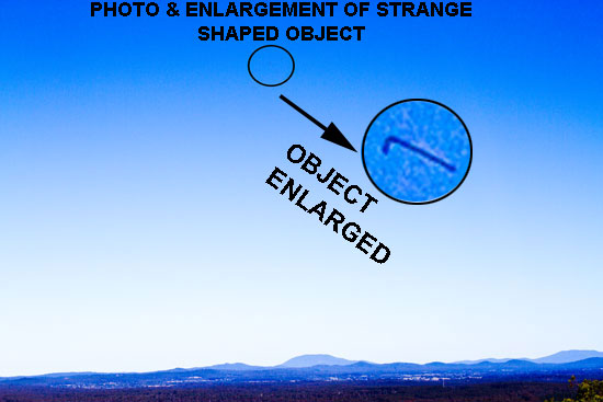 PHOTO & ENLARGEMENT OF SERPENT LIKE OBJECT.