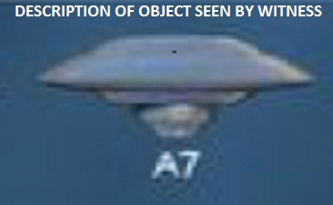 DESCRIPTION OF OBJECT SEEN BY WITNESS.