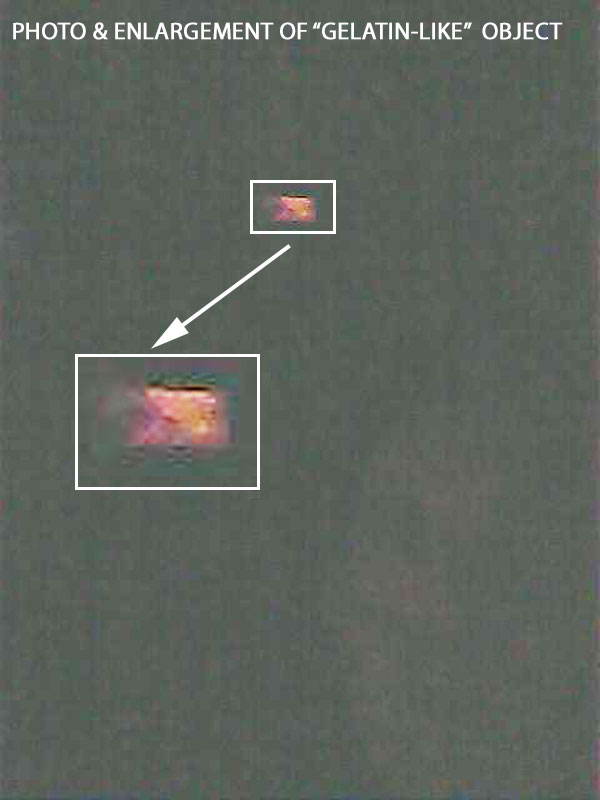PHOTO & ENLARGEMENT OF GELATIN-LIKE OBJECT.