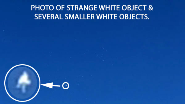 PHOTO OF STRANGE WHITE OBJECT & SEVERAL SMALLER WHITE OBJECTS.