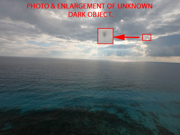 PHOTO & ENLARGEMENT OF UNKNOWN DARK OBLONG OBJECT.