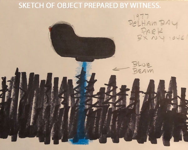 SKETCH OF OBJECT PREPARED BY WITNESS.