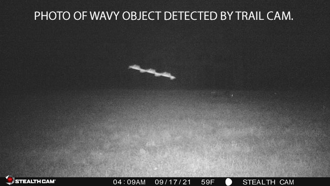 PHOTO OF WAVY OBJECT DETECTED BY TRAIL CAM.